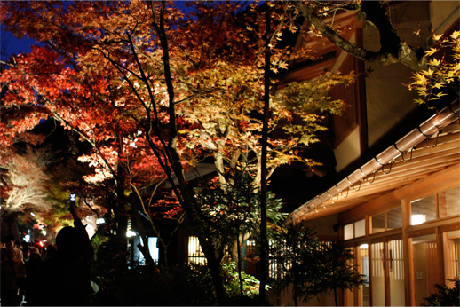 2010kyoto_night